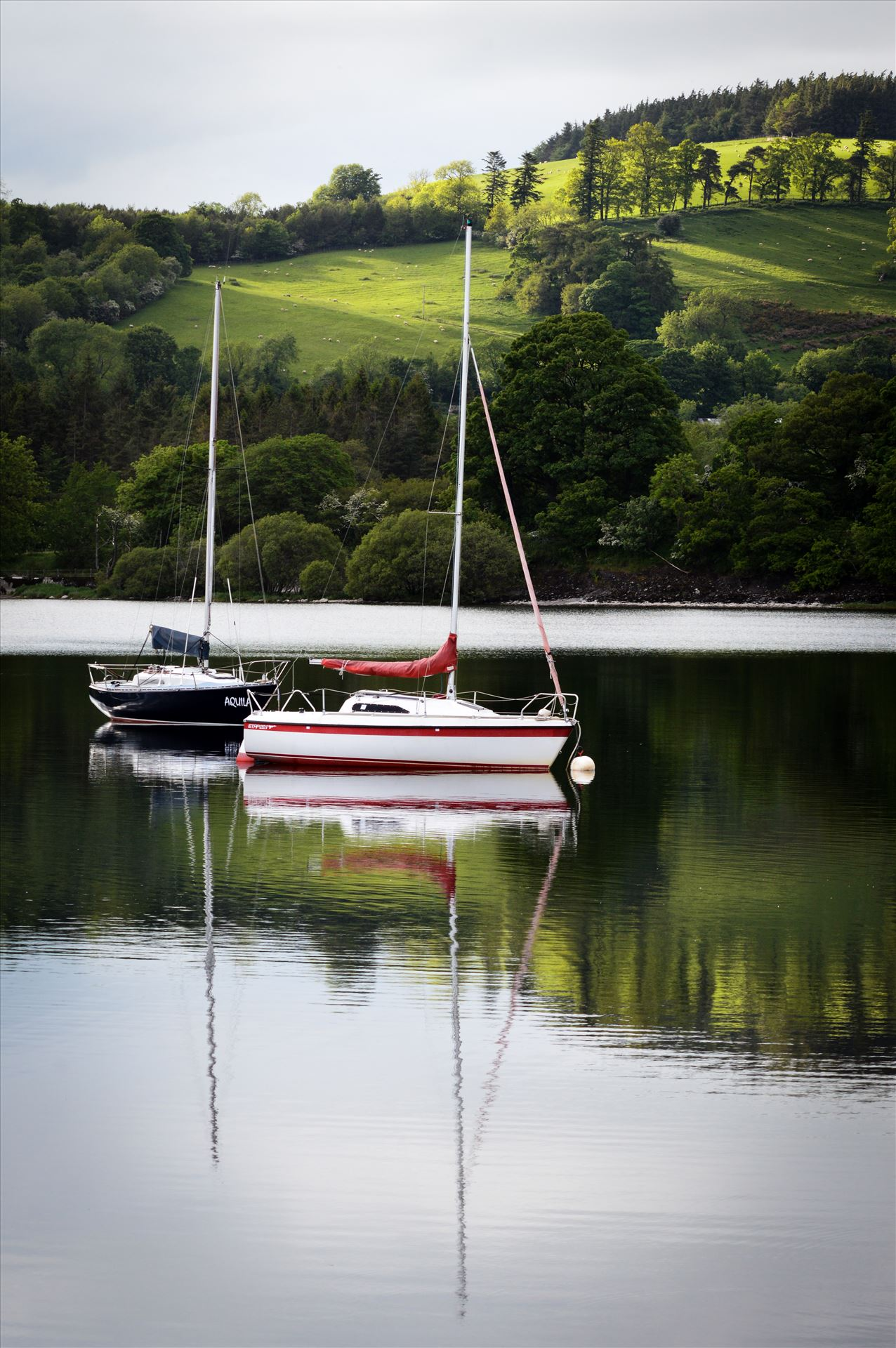 Reflections on Lake Ullswater - Reflections on a Lake by AJ Stoves Photography