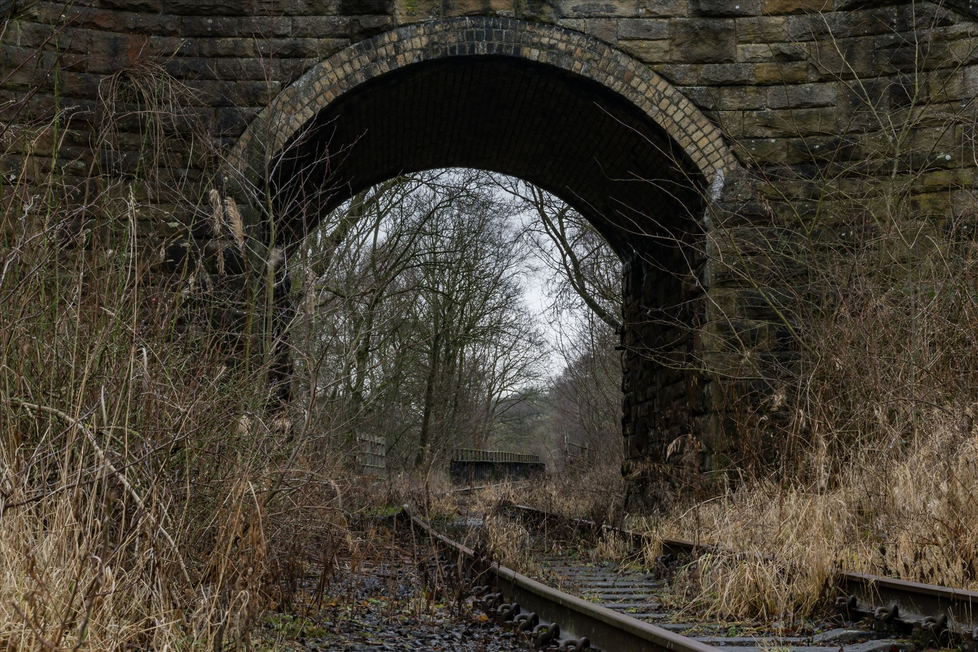 Abandoned Railway Bridge and Tunnel - Taken on 11/01/18 near Stanhope by AJ Stoves Photography